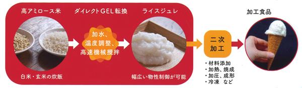 高アミロース米を米粒のままダイレクトGEL転換技術を用い米加工食品(ライスジュレ)を製造