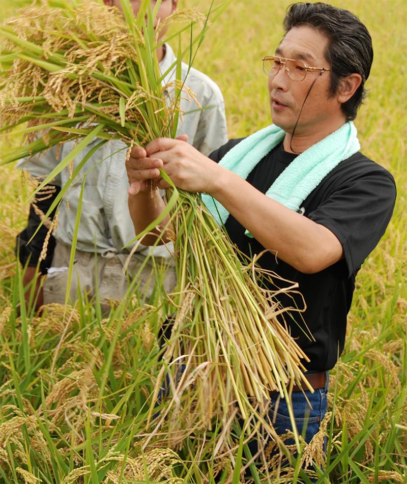 関東の米蔵・早場米の産地